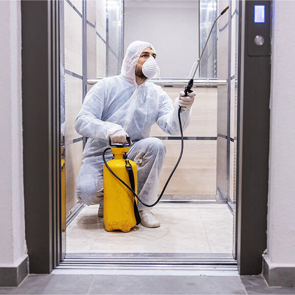 antimicrobial surface protectant